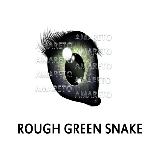 rough-green-snake