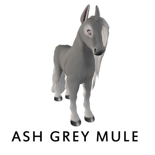 ash_grey_mule