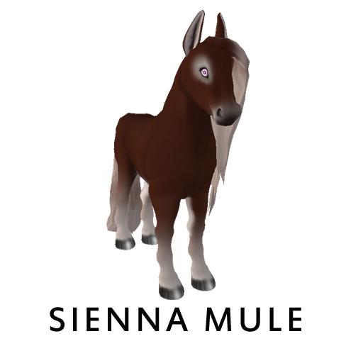 sienna_mule